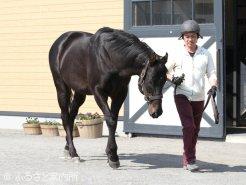 今季も体調は良く、丈夫な馬