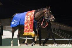 20年振りの地元所属馬の優勝