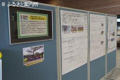 静内小学校4年生の力作を展示