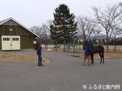 3月は2歳馬取材も相次いだ