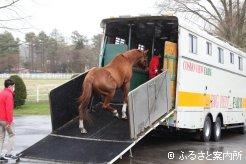 余生を送る十勝軽種馬農協種馬所へ向かった