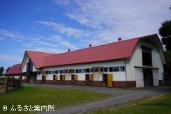 谷岡牧場の厩舎