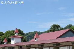 豊洋牧場本場の厩舎