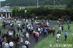 1,376名の購買登録者で賑わった北海道サマーセール