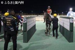 田中淳司厩舎のワン・ツー