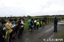 馬の牧場の仕事について理解を深めた